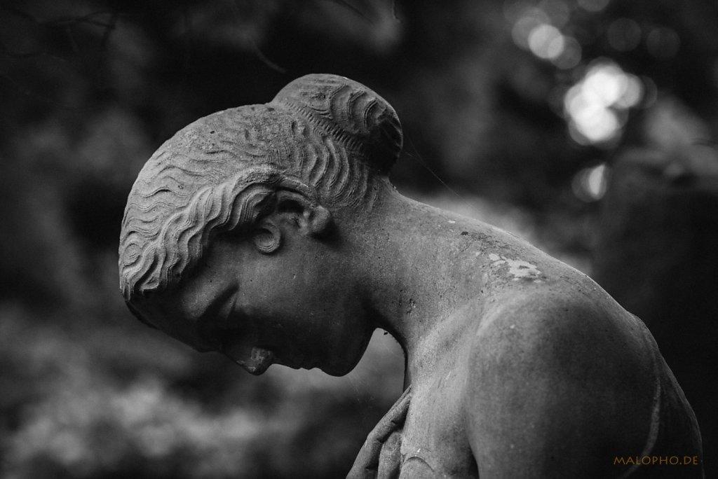 Horstfriedhof SW 2015