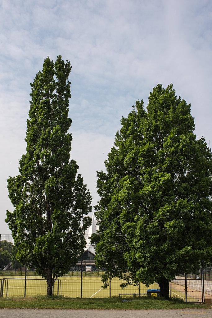 Bäume vor Tempodrom