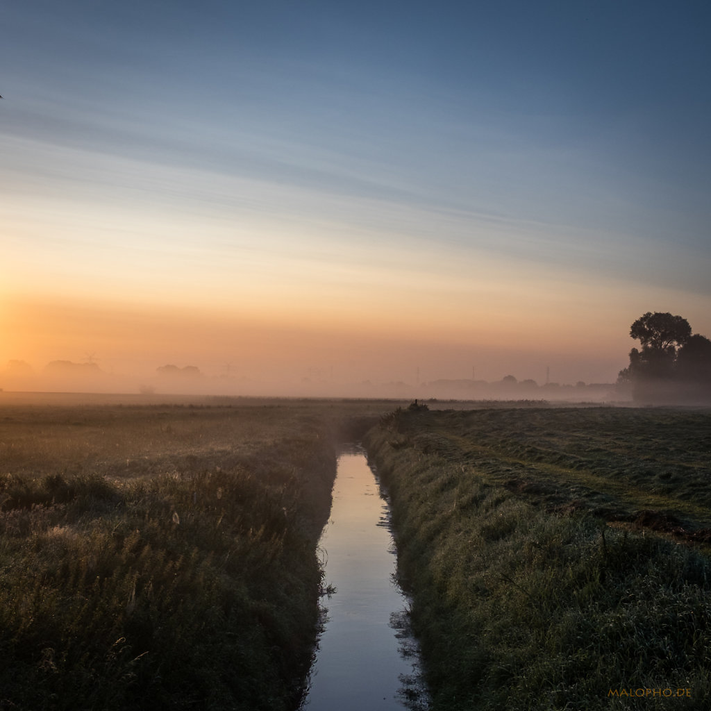 Morgennebel-3