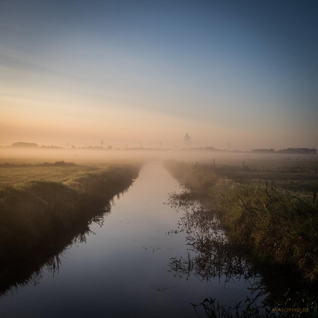 Morgennebel-4