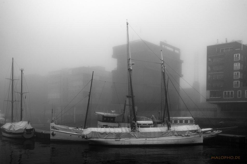 Nebelsonntag 2018