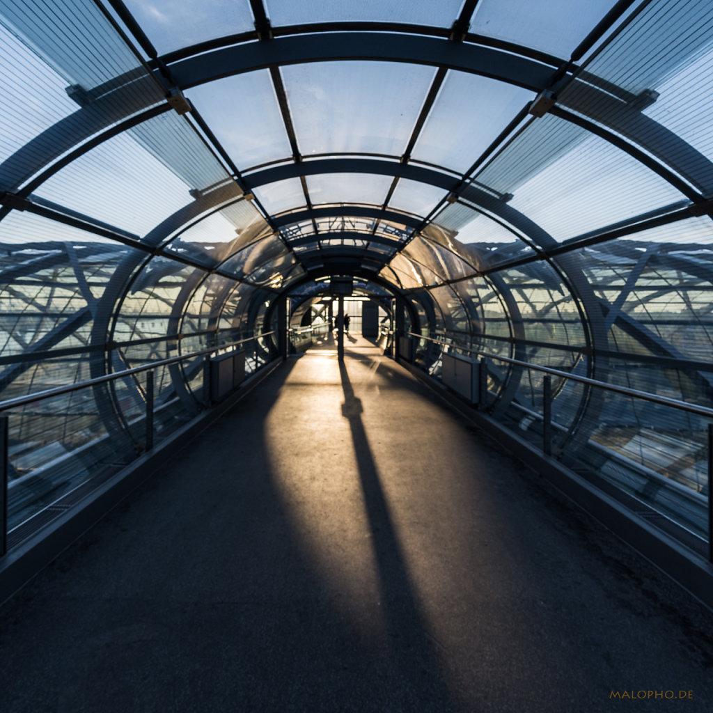 Skylightwalk