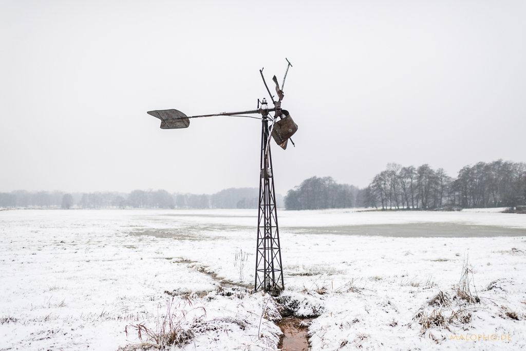 Schwingewiesen Winter 2017