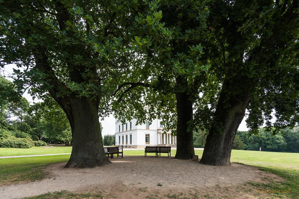Haus hinter Bäumen-2