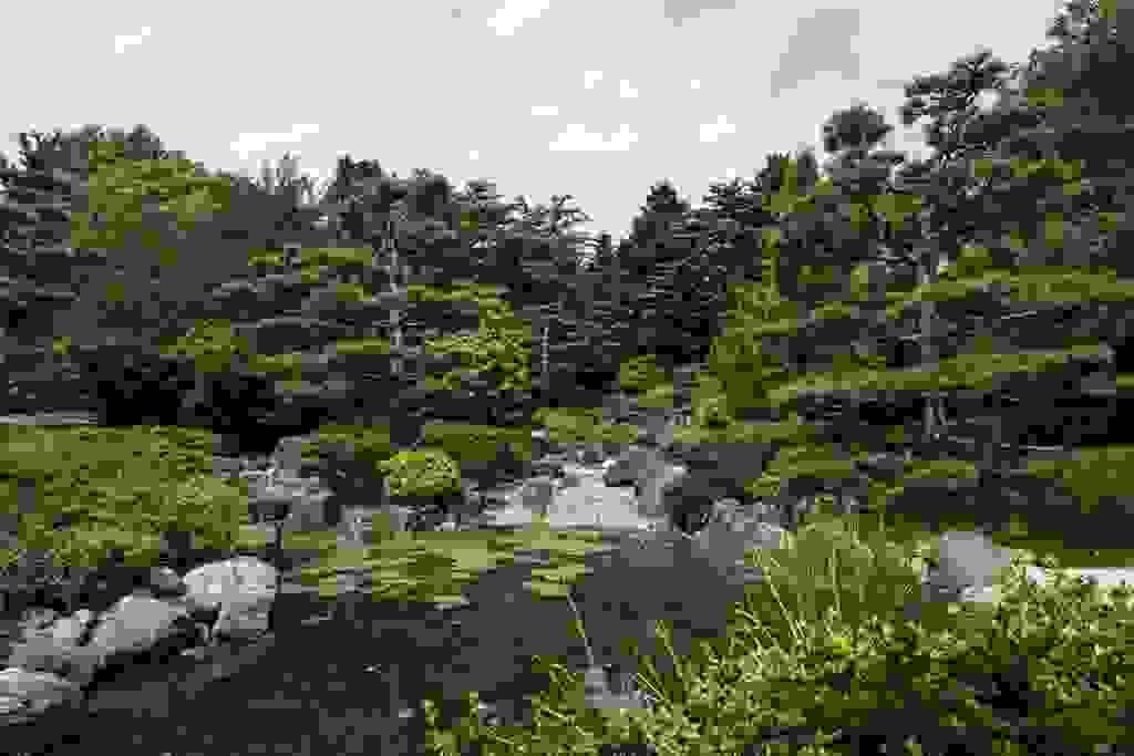 Japanischer Garten-1
