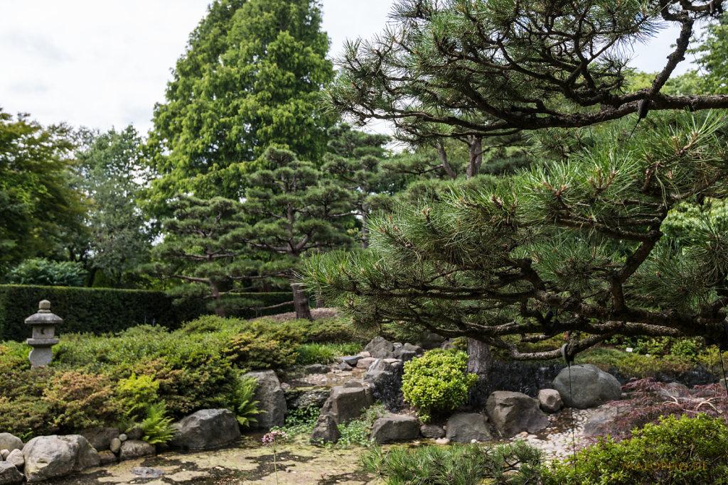Japanischer Garten-2