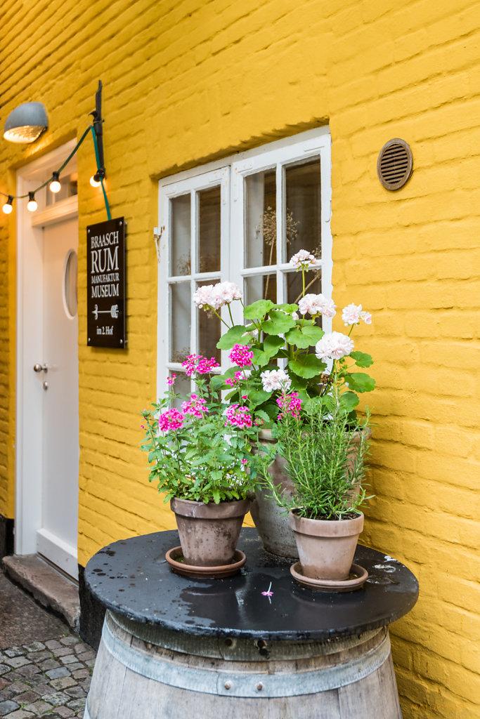 Blumen vor Gelb