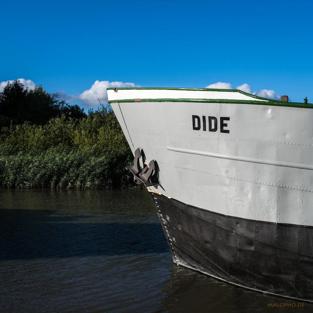 Dide Bug