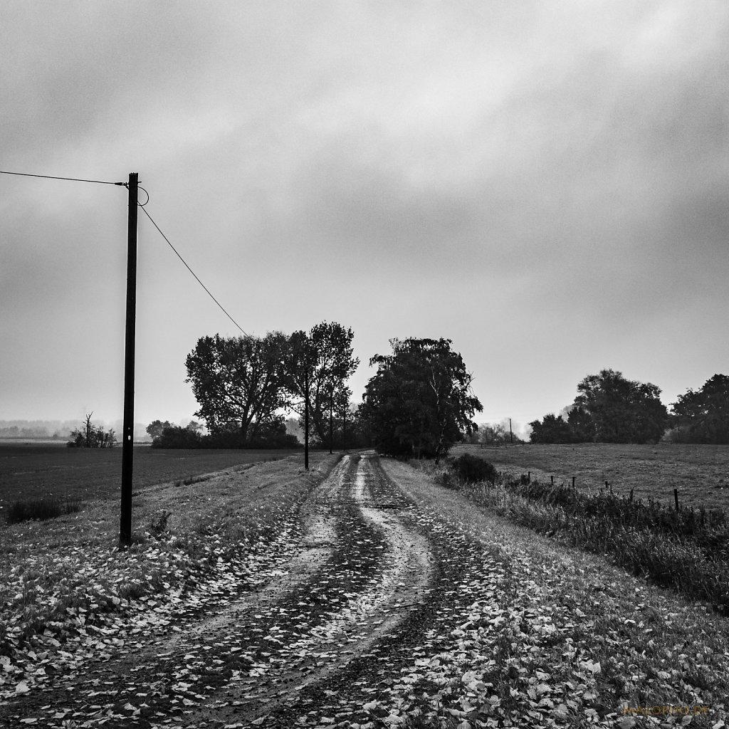 10 | 30 - Nieselweg