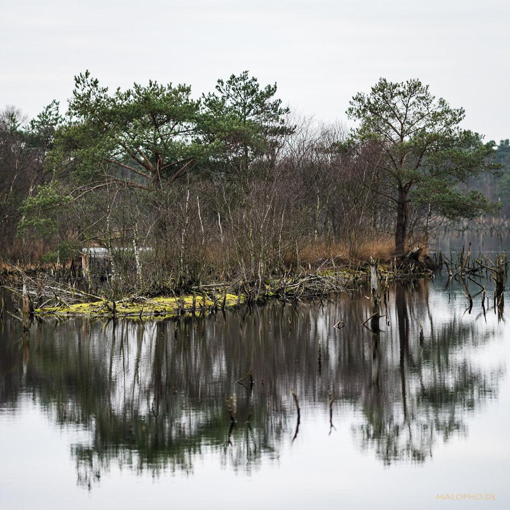 Spiegelinsel