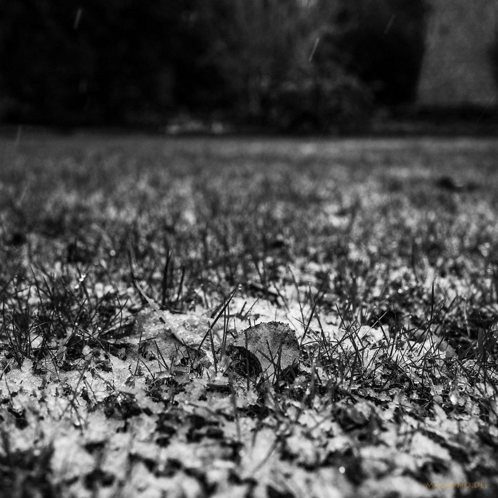 01 | 06 - Erster Schnee