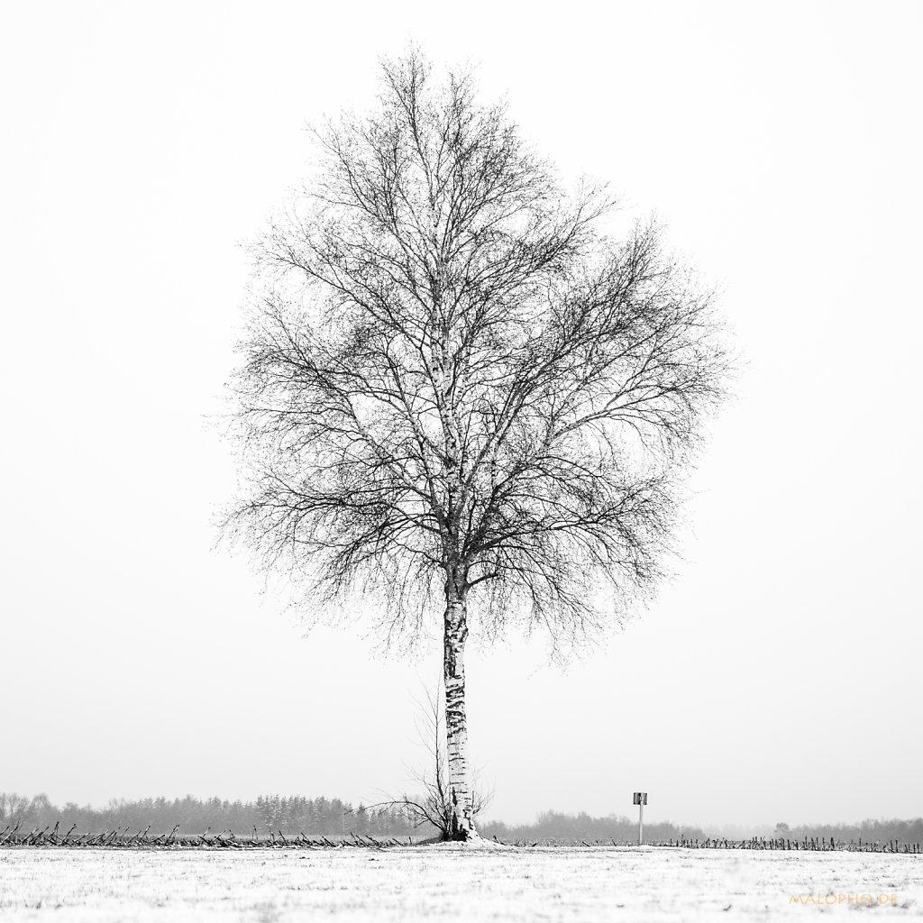 01 | 07 - Verschneit und Einsam