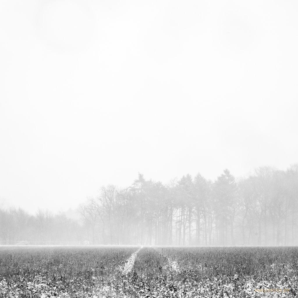 01 | 29 - Seine Spuren im Schnee