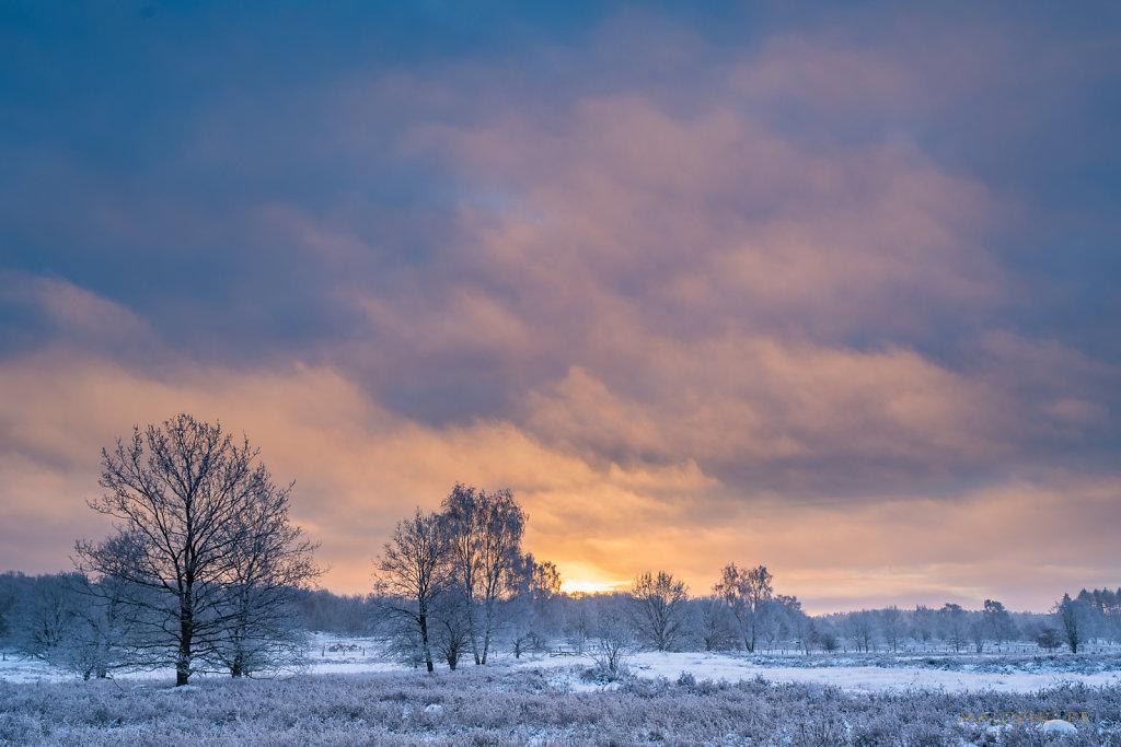Heide Sunrise I