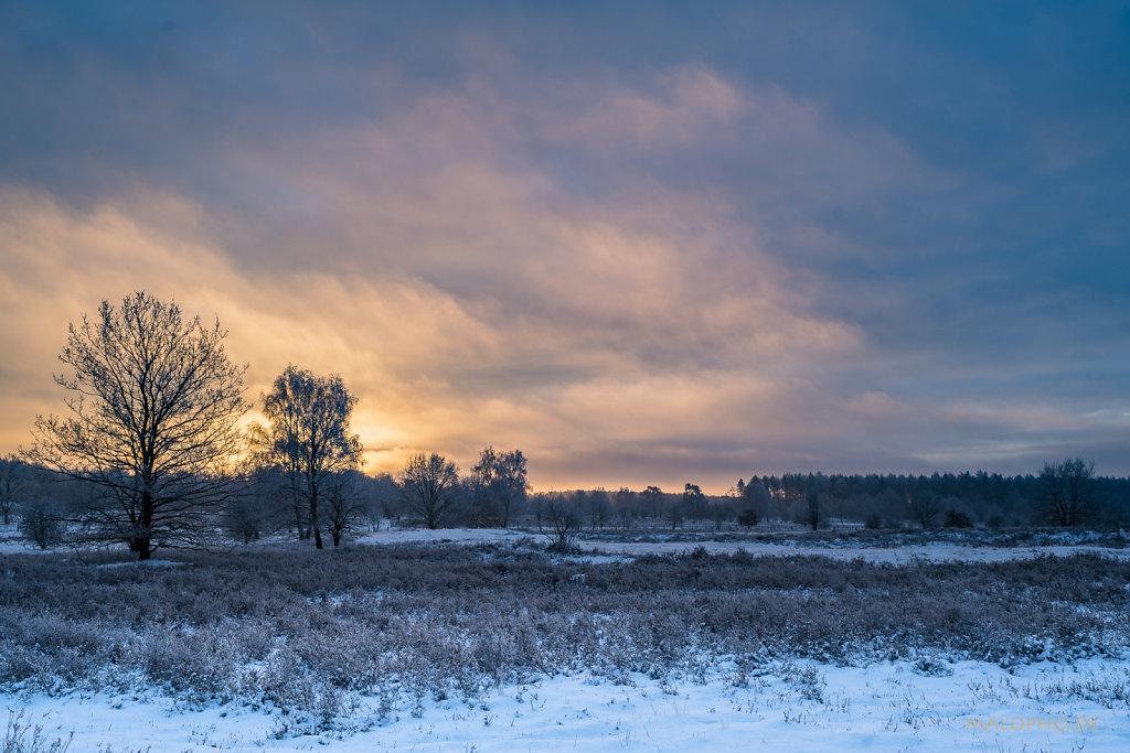 Heide Sunrise II