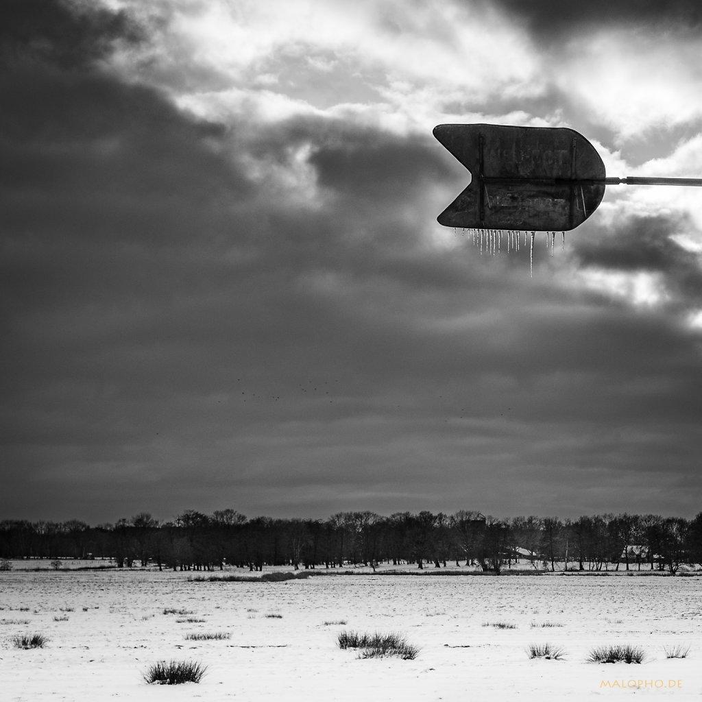 02 | 10 - Eis.Wind.Weide