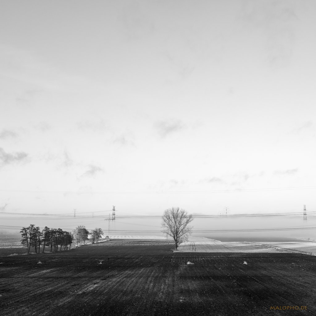 02 | 28 - Land im Nebel