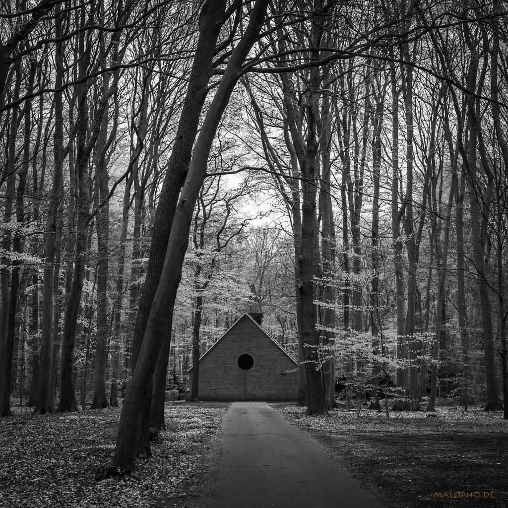 05 | 02 - Waldkapelle