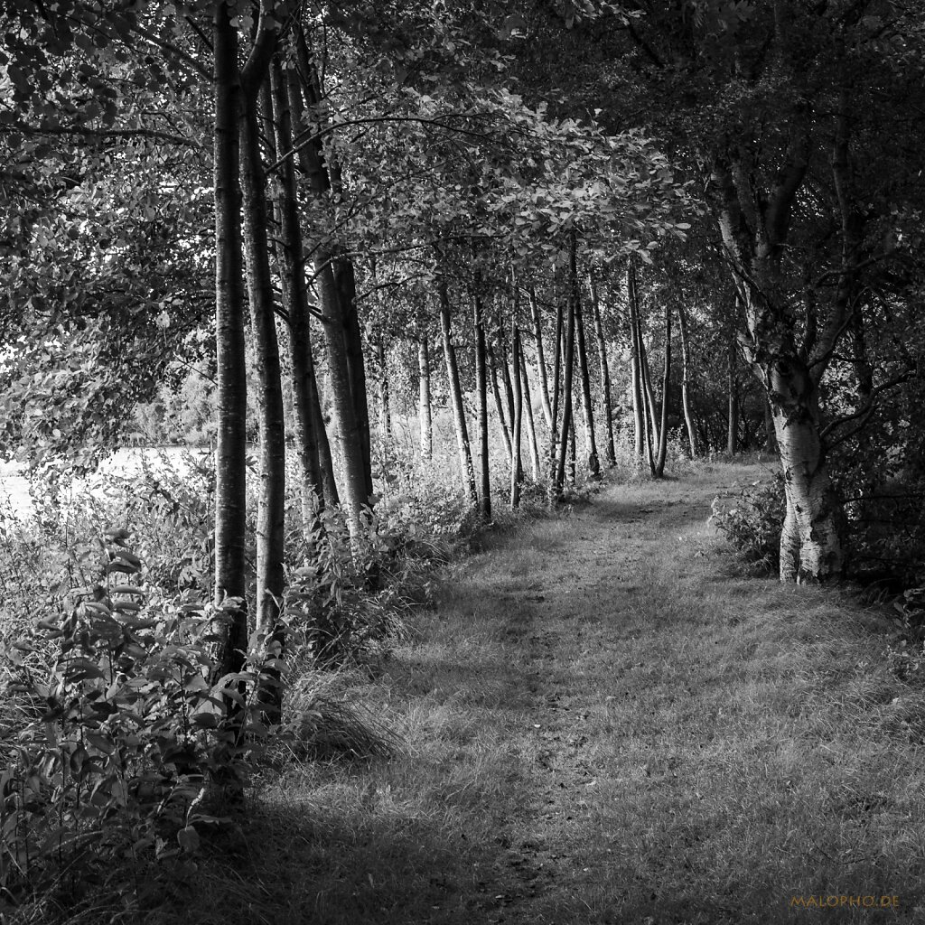 08 | 08 - Moorweg I