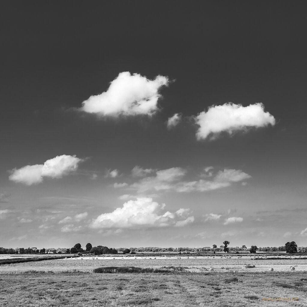 08 | 15 - Asseler Sand