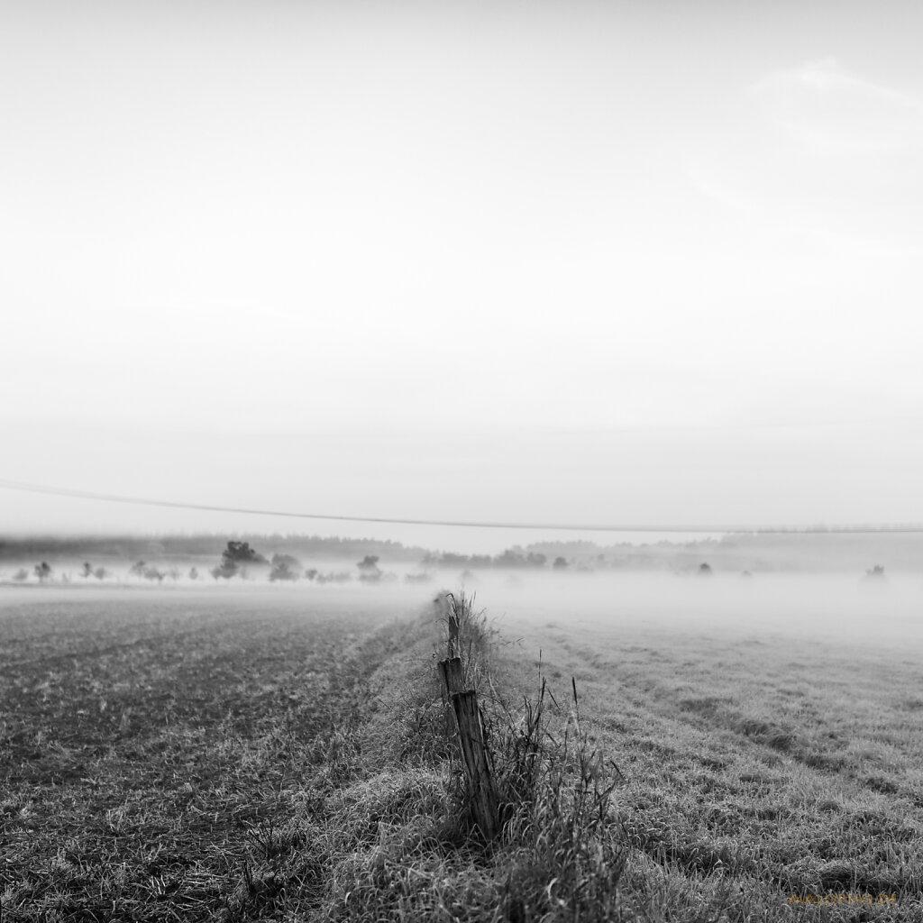 09 | 06 - Nebelzaun