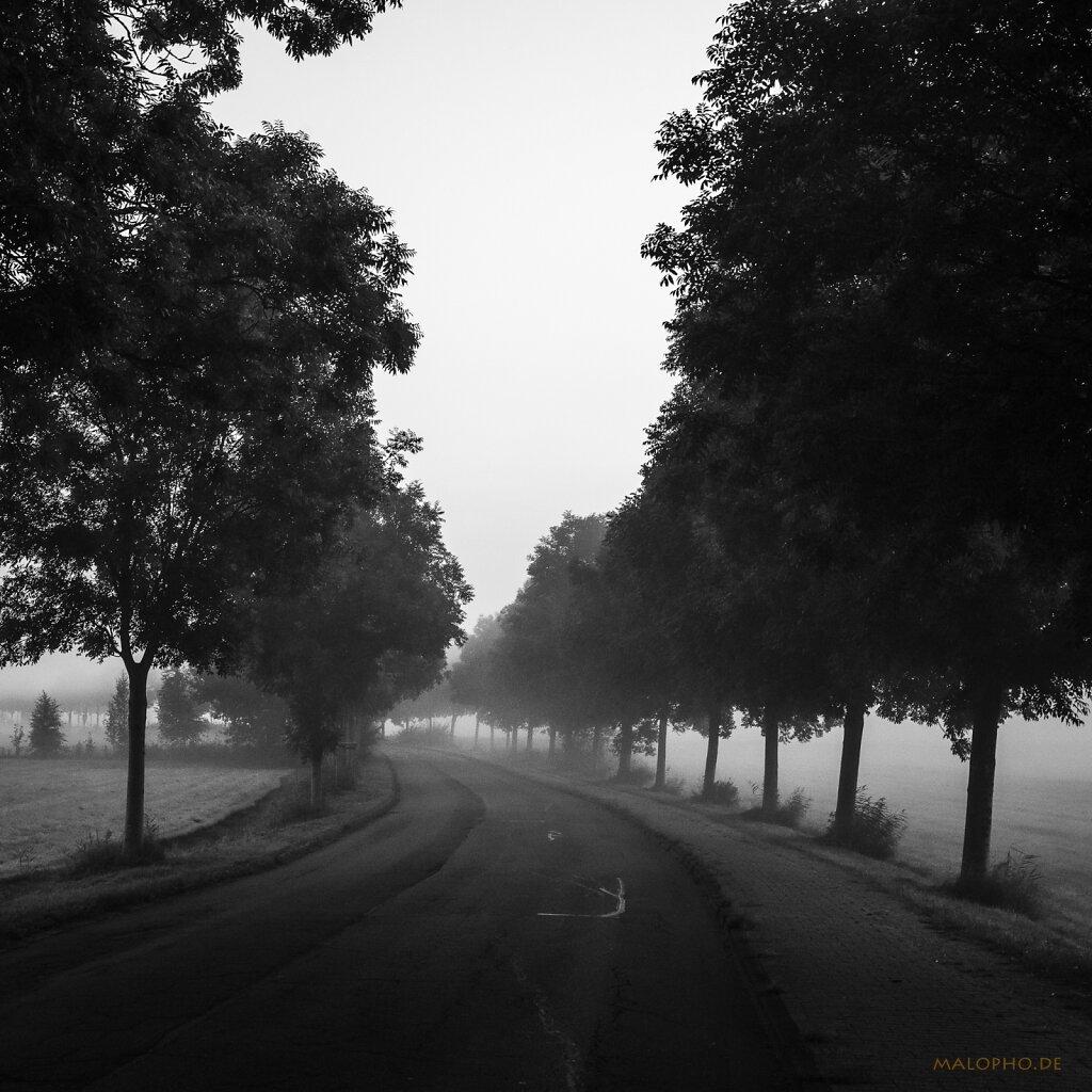 09 | 07 - Weg zur Arbeit